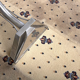 carpet cleaning in los-angeles